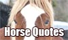 Horse Sayings